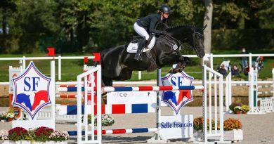 Trakehner Hengst ist Weltmeister der Jungen Vielseitigkeitspferde