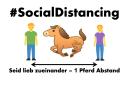 AKTION: Ein Pferd Abstand